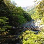徳島の秘境、祖谷渓谷かずら橋