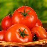 スギ花粉症とトマトの意外な関係