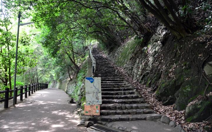 先が見えないほどの長い階段